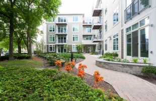 Sustainable Cambridge Apartments