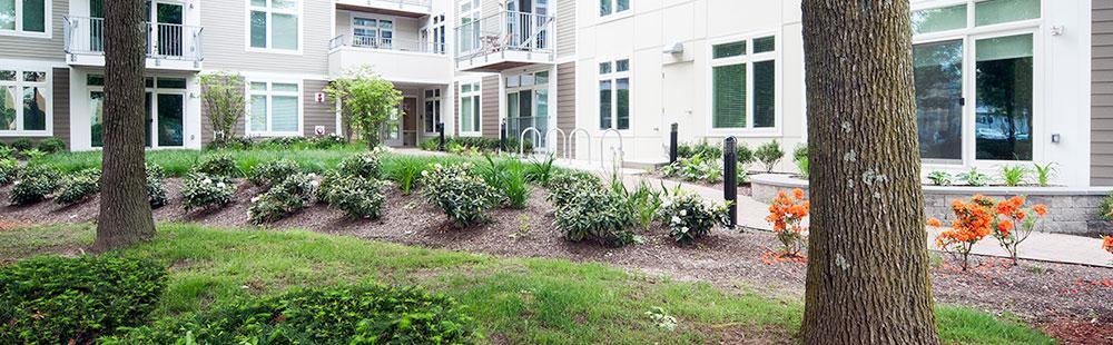 Sustainable Cambridge Apartments